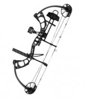 Cruzer bear archery bow